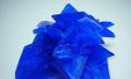 Postřik vína modrou skalicí