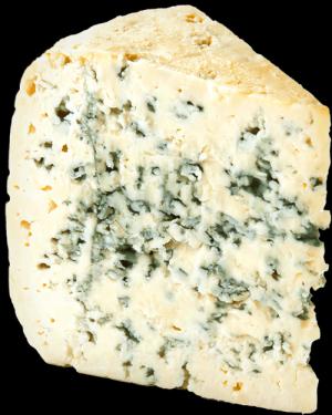 Sýrová omáčka sNivou